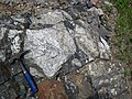 Clast-rich impact pseudotachylite (Sudbury Breccia, Paleoproterozoic, 1.85 Ga; Windy Lake Northwest roadcut, Sudbury Impact Structure, Ontario, Canada) 90 (32815026797).jpg