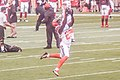 Cleveland Browns vs. Atlanta Falcons (28514669094).jpg