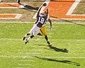 Cleveland Browns vs. Pittsburgh Steelers (15527609741).jpg