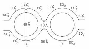 Nafion - Cluster-network model