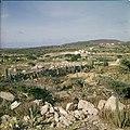 Collectie Nationaal Museum van Wereldculturen TM-20029565 Gezicht op het landschap bij Casibari, met stenen erfafscheiding Aruba Boy Lawson (Fotograaf).jpg