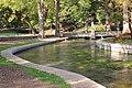 Comal River in Landa Park.jpg