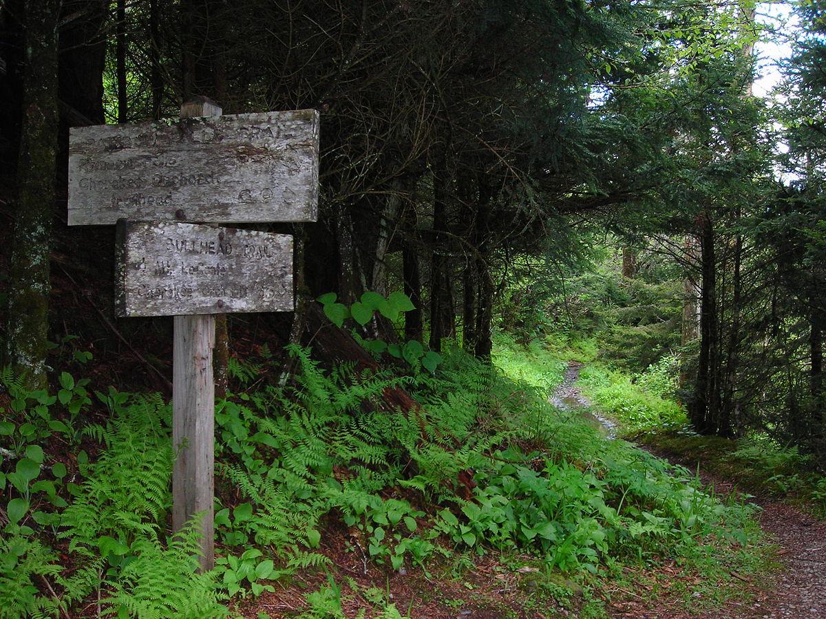 Bullhead trail wikipedia for Trail lodge