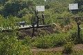 Coringa reserve forest park mangrove forest 11.jpg