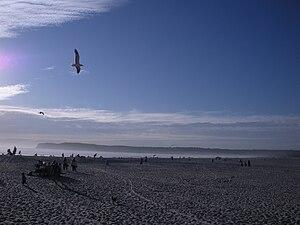 Coronado, San Diego. MLK Day 2009.