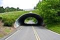 Corrugated Metal Tunnel Under Bridge By Cornell Plantations (3623849000).jpg