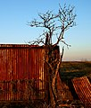 Corrugated fence in Rotherham, South Yorkshire.jpg