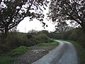 Country road north-west of Holsworthy (2) - geograph.org.uk - 596062.jpg