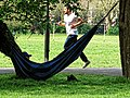 Covid-19 pandemic One form of exercise Tottenham style in a hammock.jpg