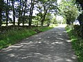 Cow Close Lane near Kirkby Malham - geograph.org.uk - 719190.jpg
