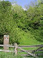 Cragbank Woods National Nature Reserve - geograph.org.uk - 461412.jpg