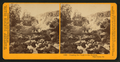 Crossing the Creek to the Geysers, Napa Co., Cal, by Watkins, Carleton E., 1829-1916.png