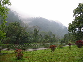 Cuc.Phuong.National.Park.jpg