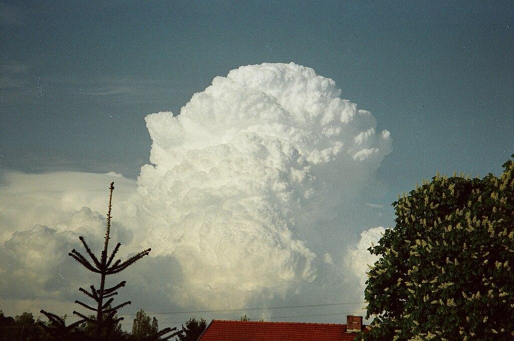 Cumulus congestus-east horizon.1996