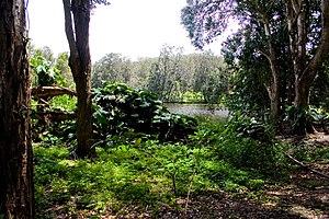 Currumbin Wildlife Sanctuary - Currumbin Wildlife Sanctuary