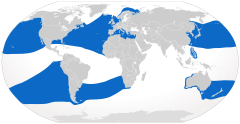 Range of the basking shark