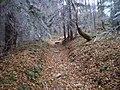 Czerwony szlak na Skałkę - panoramio (1).jpg