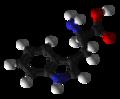 D-tryptophan-3D-balls.png