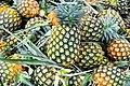 D85 0040 สับปะรด Pine Apple in Thailand Photographed by Trisorn Triboon.jpg