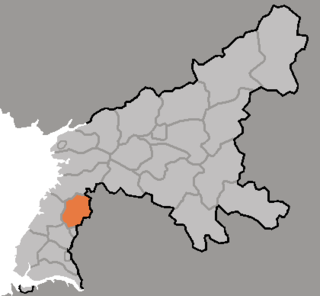 Taedong County County in South Pyŏngan, North Korea