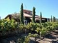 DSC24923, Viansa Vineyards & Winery, Sonoma Valley, California, USA (5107852062).jpg