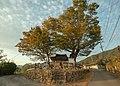 Dangsan-namu-suhan-village-korea PML9647.jpg