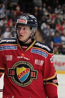 Ishockey elitserien 2003 01 24