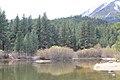 Davis Creek Park - panoramio (11).jpg