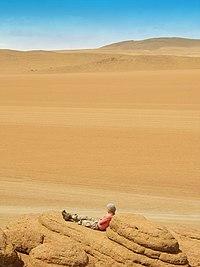 El Altiplano andino presenta un tipo de clima frio y arido, como el Desierto de Siloli