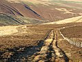 Dewar Hill - geograph.org.uk - 292258.jpg