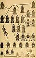 Die Kriechthiere Deutsche-Ost-Afrikas- beiträge zur Systematik und Descendenzlehre; (1897) (20743652829).jpg
