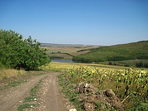Dirt road to the lake - panoramio.jpg