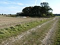 Disused chalk pit - geograph.org.uk - 1507994.jpg