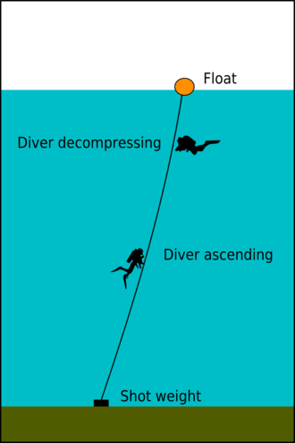 Diving shot - Divers ascending and decompressing on a basic shotline: Weight, and float connected by a line of fixed length