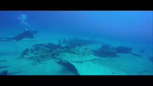 File:Diving in Cabo San Lucas.webm
