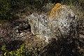 Dolmen de la Rouquette.jpg