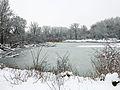 Donau-Auen-Dechantlacke.jpg