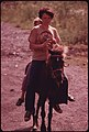 Donna Smith, 16, Daughter of Disabled Miner Jack Smith, From Rhodell, near Beckley, West Virginia, Rides the Family Pony with a Neighbor Seated behind Her 06-1974 (3907238138).jpg