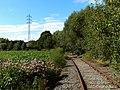Dood spoor - panoramio.jpg