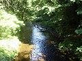 Downstream Bervie Water - geograph.org.uk - 1387739.jpg