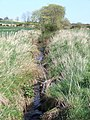 Drainage ditch at Newmore Mains farm - geograph.org.uk - 421218.jpg