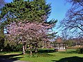 Droitwich spa - panoramio (2).jpg