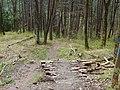 Drop - panoramio (2).jpg
