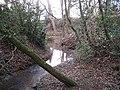 Dumblehole Brook - geograph.org.uk - 1202707.jpg