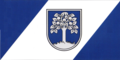 Durbes novada karogs.png