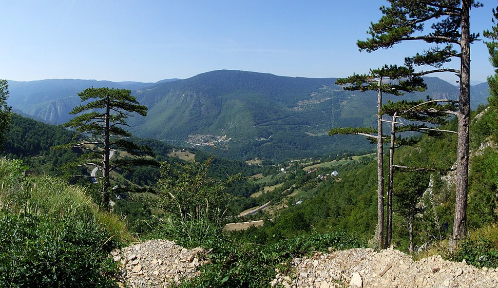 Durmitor, canyon Tara - Montenegro