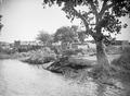 ETH-BIB-Dorf am Niger-Tschadseeflug 1930-31-LBS MH02-08-0497.tif