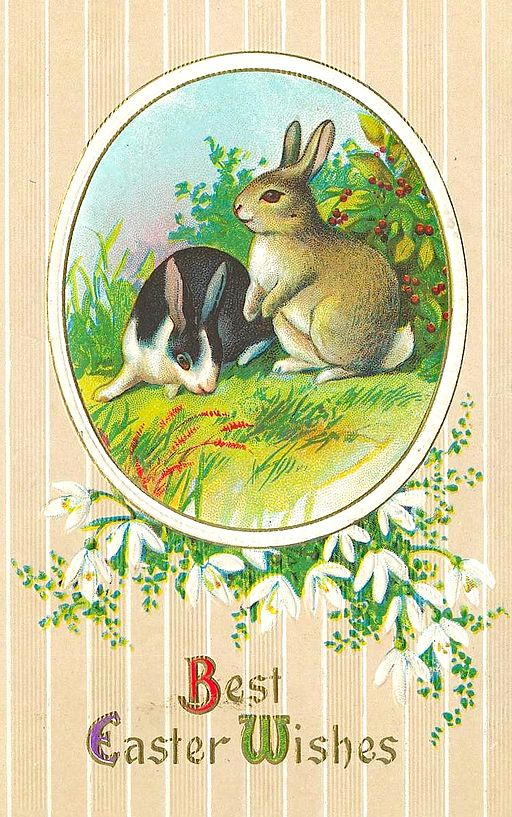 Easter Bunny Postcard 1900 a