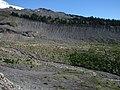 Easton Glacier Moraine 3410.JPG