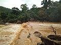Eb river of at Gullu waterfall.jpg